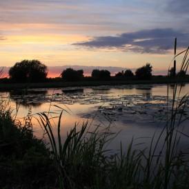 marais-audomarois-©2011-Legris-Office-de-Tourisme-de-la-Région-de-Saint-Omer-20-274x274